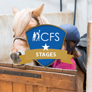 MiniatureStage%20%7C%20Baby%20Poney%20-%20Winterjumping